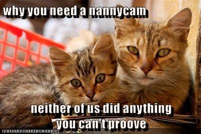 why you need a nannycam  neither of us did anything                                     you can't proove