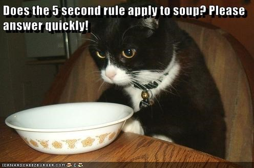 Does the 5 second rule apply to soup? Please answer quickly!