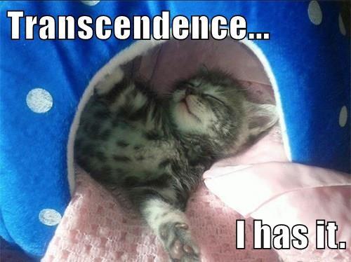 Transcendence...  I has it.