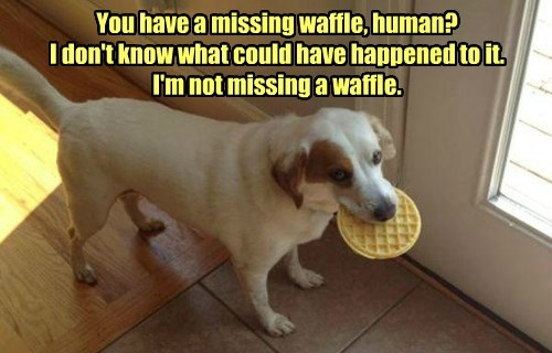 You have a missing waffle, human? I don't know what could have happened to it. I'm not missing a waffle.