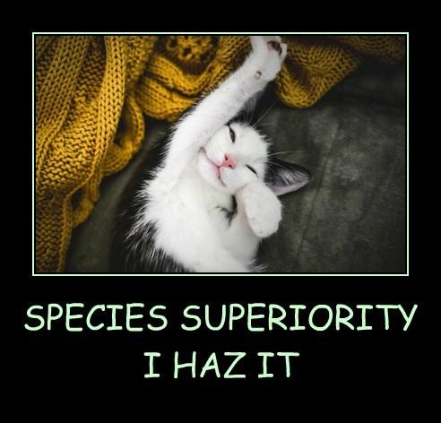 SPECIES SUPERIORITY I HAZ IT