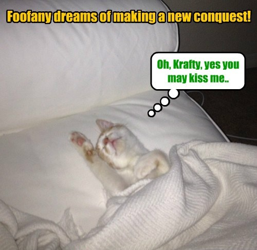 Will Foofany be successful in her scheming desires?
