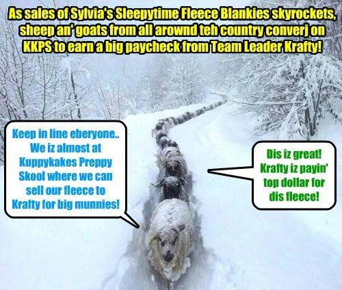 NEW PRODUCT BREAKING NEWS - Sylvia's Triple Fleece Blankies break all sales records on Amazon an' Walmarts! As worldwide fleece supplies fall, Krafty goes to teh source for teh much needed fleece!