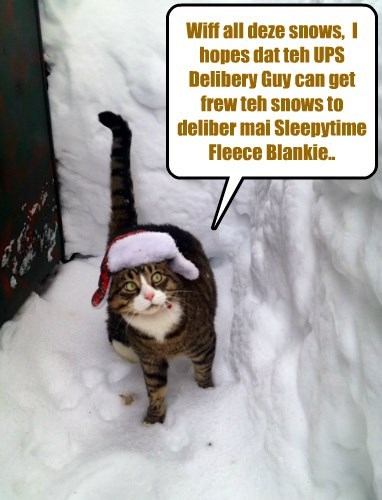 Wiff Sylvia's Sleepytime Fleece Blankies selling superfast, teh biggest demand comes from kitties in cold an' snowy climates..