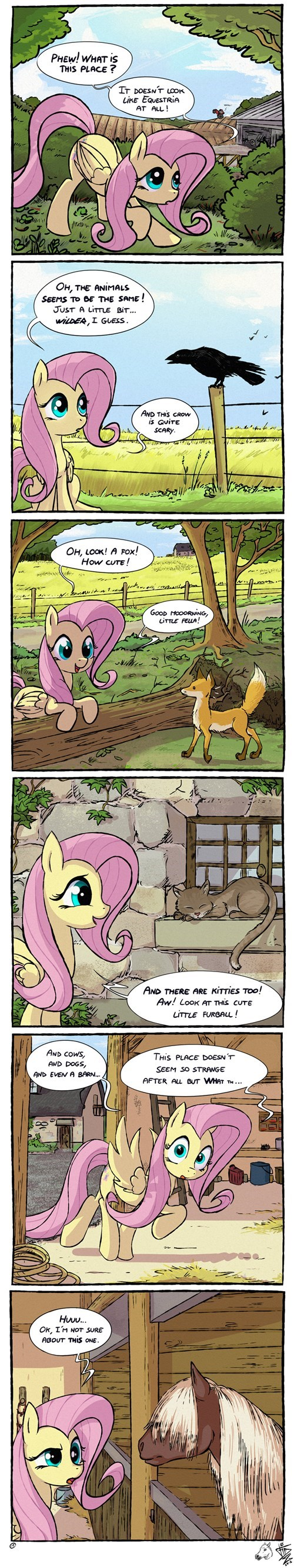 Fluttershy Enters a Nightmare Dimension