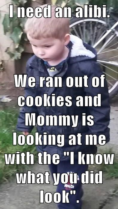 """I need an alibi.  We ran out of cookies and Mommy is looking at me with the """"I know what you did look""""."""