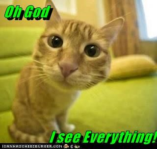 Oh God  I see Everything!