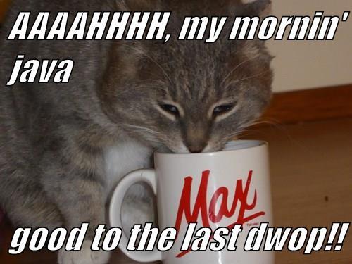 AAAAHHHH, my mornin' java  good to the last dwop!!