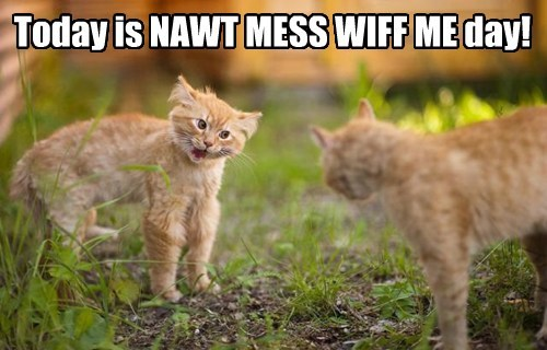 Today is NAWT MESS WIFF ME day!