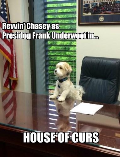 Revvin' Chasey as Presidog Frank Underwoof in...
