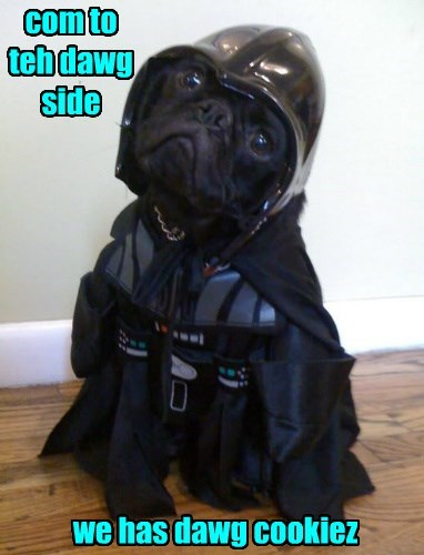 dogs,pug,star wars,dark side,darth vader