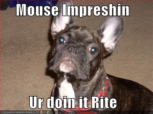 Mouse Impreshin  Ur doin it Rite
