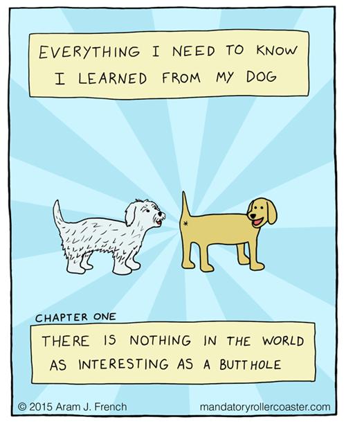 Dogs Teach Us Much