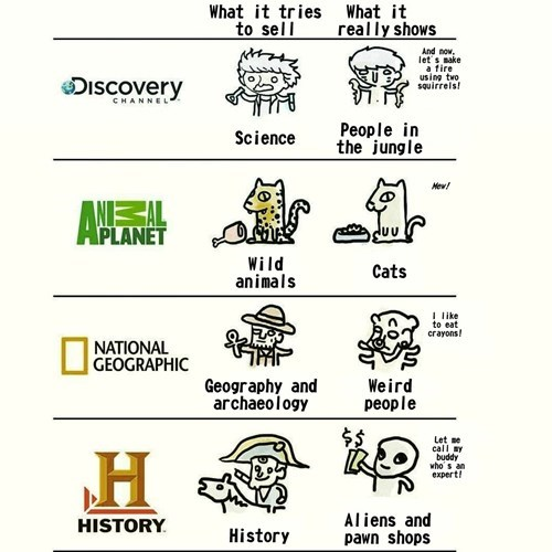 national geographic,animal planet,ancient aliens,history channel,television