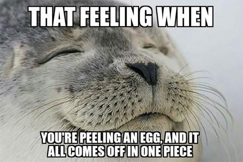 that feel,eggs,Memes