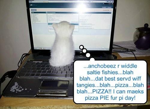 Beanie maeks a pizza PIE fur pi day at KKPS!