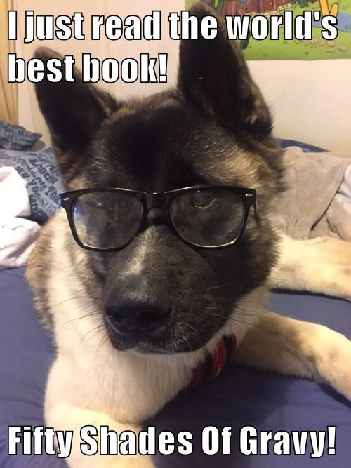 dogs,captions,fifty shades of grey,funny