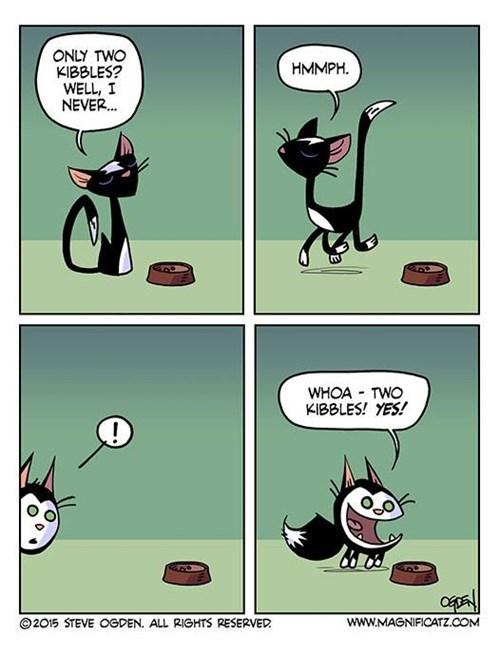 kibbles,food,Cats,perspective,web comics