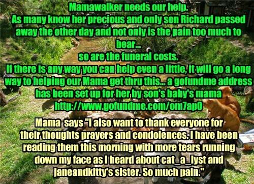If You Can Help Our Dear Mamawalker...http://www.gofundme.com/om7ap0