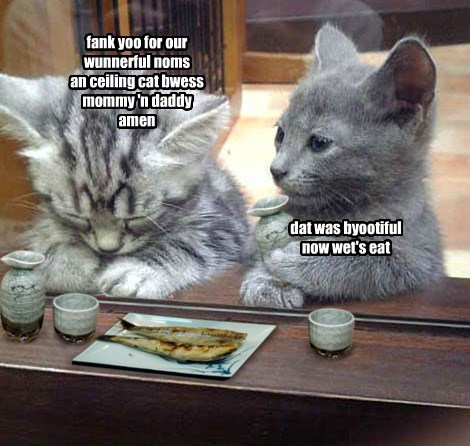 fank yoo for our wunnerful noms an ceiling cat bwess mommy 'n daddy amen