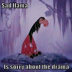 Sad llama  Is sorry about the drama