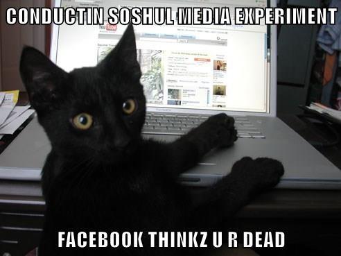 CONDUCTIN SOSHUL MEDIA EXPERIMENT  FACEBOOK THINKZ U R DEAD