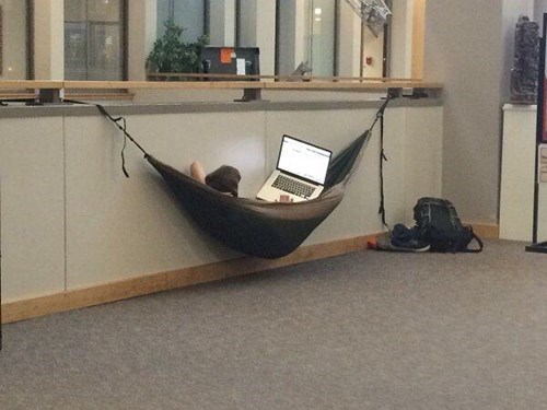 studying in a hammock at college