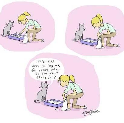 funny-web-comics-cats-have-questions-about-humans-strange-behavior