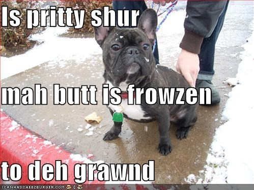 Is pritty shur mah butt is frowzen to deh grawnd