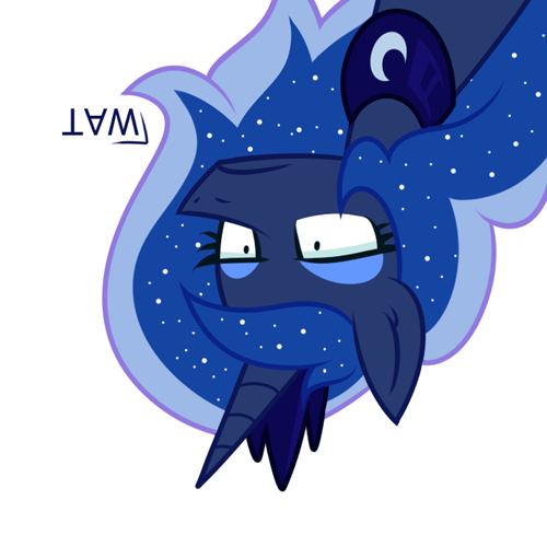 Luna Sees Everything... From The Moon