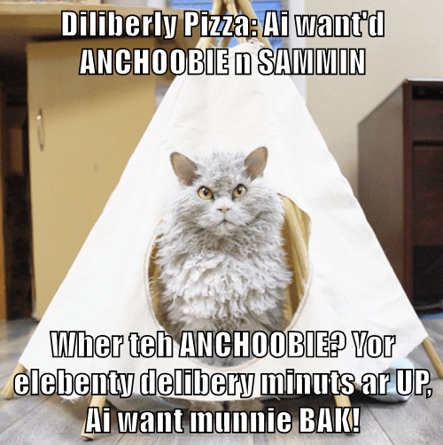 Diliberly Pizza: Ai want'd ANCHOOBIE n SAMMIN  Wher teh ANCHOOBIE? Yor elebenty delibery minuts ar UP, Ai want munnie BAK!