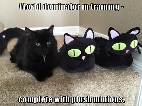 World dominator in training -  complete with plush minions.