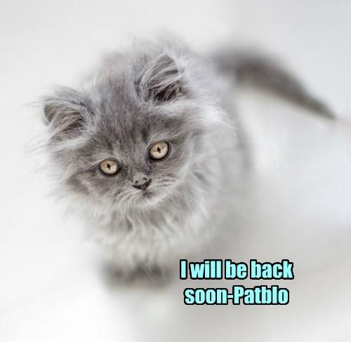 I will be back soon-Patblo
