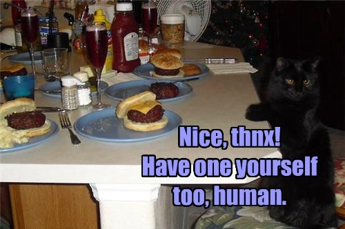 Nice, thnx! Have one yourself too, human.