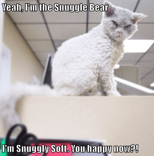 Yeah, I'm the Snuggle Bear  I'm Snuggly Soft. You happy now?!