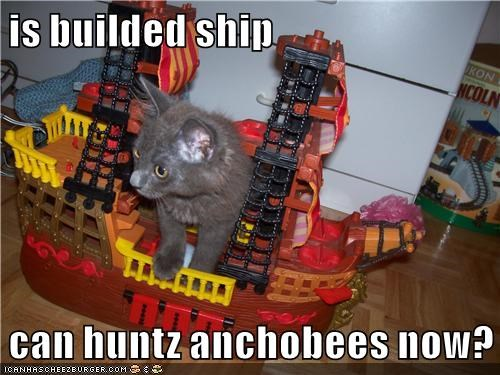is builded ship  can huntz anchobees now?