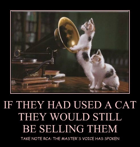 IF THEY HAD USED A CAT THEY WOULD STILL BE SELLING THEM