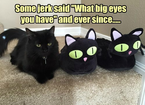 """Some jerk said """"What big eyes you have"""" and ever since....."""