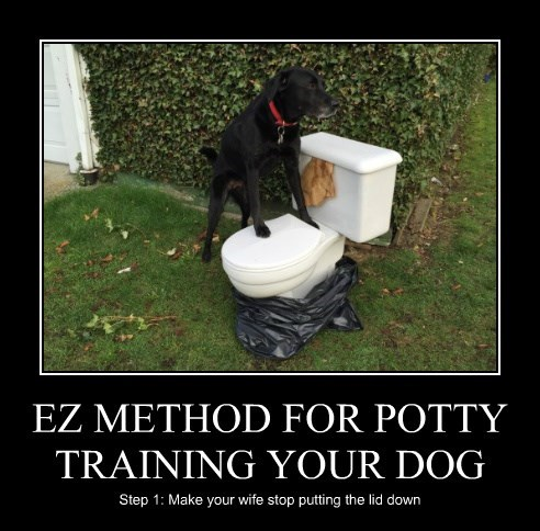 EZ METHOD FOR POTTY TRAINING YOUR DOG