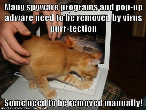 Many spyware programs and pop-up adware need to be removed by virus purr-tection  Some need to be removed manually!