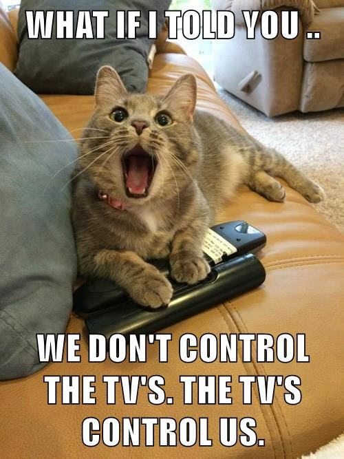 WHAT IF I TOLD YOU ..  WE DON'T CONTROL THE TV'S. THE TV'S CONTROL US.