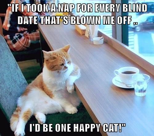 """IF I TOOK A NAP FOR EVERY BLIND DATE THAT'S BLOWN ME OFF ..  I'D BE ONE HAPPY CAT!"""