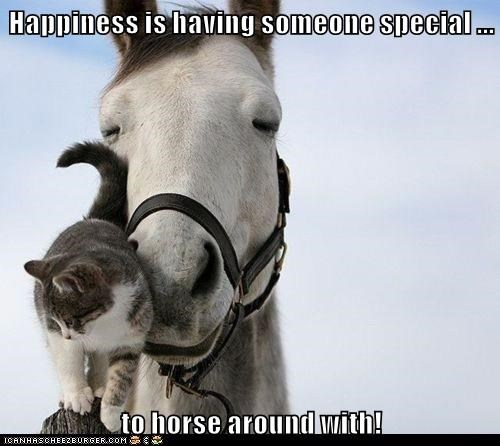 Happiness is having someone special ...  to horse around with!