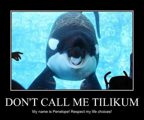 DON'T CALL ME TILIKUM