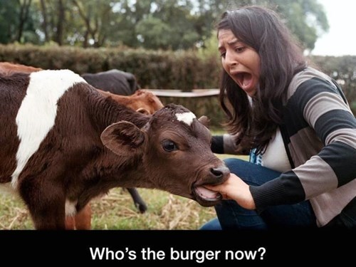 WHERE'S THE BEEF NOW, WENDY?
