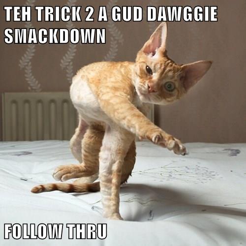 TEH TRICK 2 A GUD DAWGGIE SMACKDOWN  FOLLOW THRU