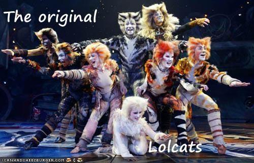 The original                 Lolcats