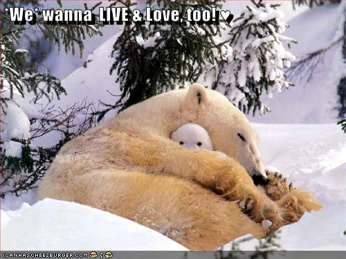 *We* wanna  LIVE & Love, too! ♥