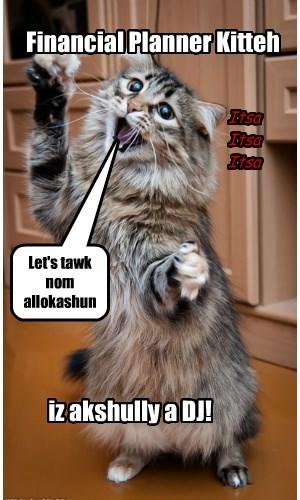 CFP: Cat Financial Planner