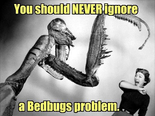 Not tonight, Honey. I have a headache & the Bedbug Itch.